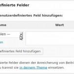 WP-Hilfe: Beitrag, Benutzerdefinierte Felder