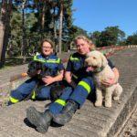 Die beiden angetretenen Rettungshunde-Teams